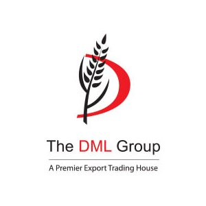 The DML Group